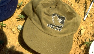 PLAY triceratops hat 1996